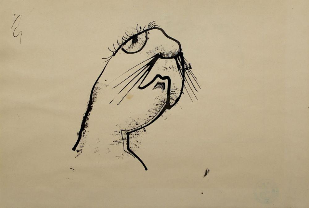 Sin Técnico Hofer - Robbe (Seal)