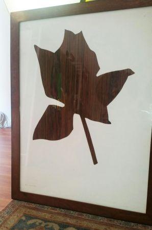 Múltiple Kounellis - Rosa