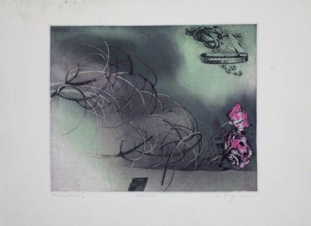 Aguafuerte Y Aguatinta Bergmann - Rosa Rose