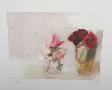 Aguafuerte Lopez - Rosas de invierno