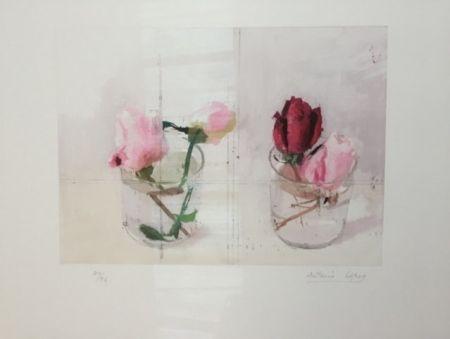 Grabado Lopez - Rosas de invierno I