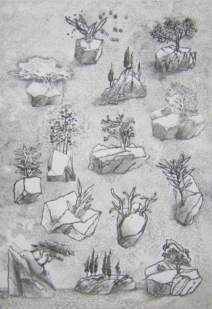 Punta Seca Leclercq-K. - Saxifrage 2e état
