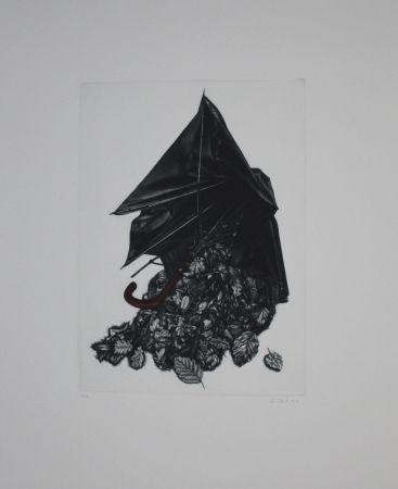 Manera Negra Ebert - Schirm und Blättern