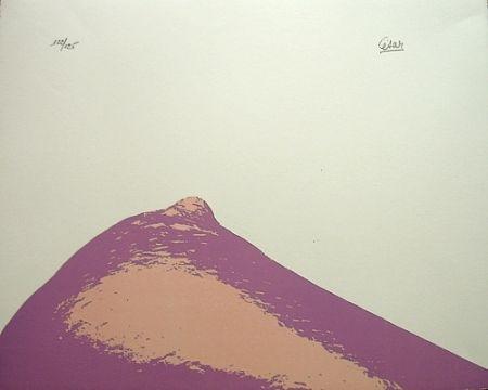 Litografía Cesar - Senza titolo,