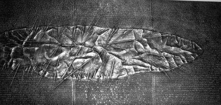 Libro Ilustrado Pomodoro - Sette frammenti da l'Arte dell'uomo primordiale