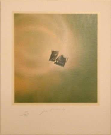 Litografía Goode - Six Lithographs (torn photo on green background)