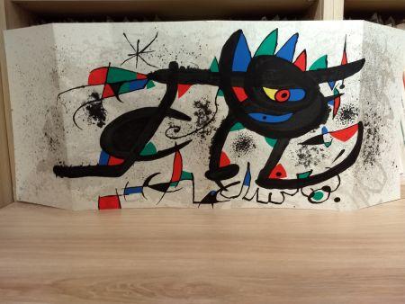 Libro Ilustrado Miró - Sobreteixims