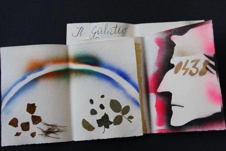 Libro Ilustrado Fioroni - Sonetto di veti e iridi