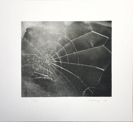 Serigrafía Celmins - Spider Web