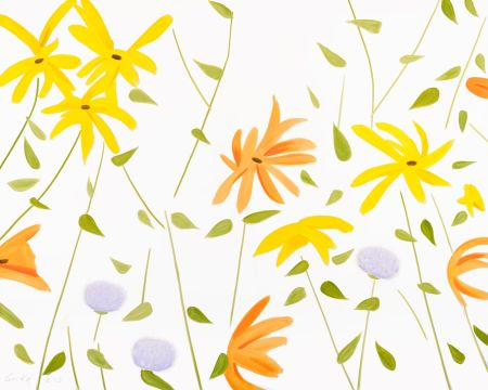 Sin Técnico Katz - Summer Flowers 2
