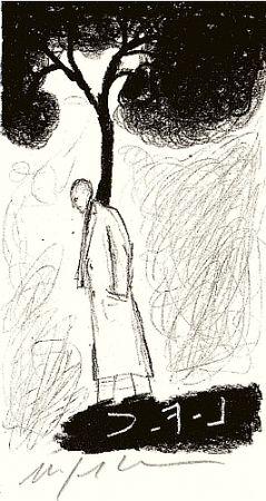 Libro Ilustrado Paladino - Tartre