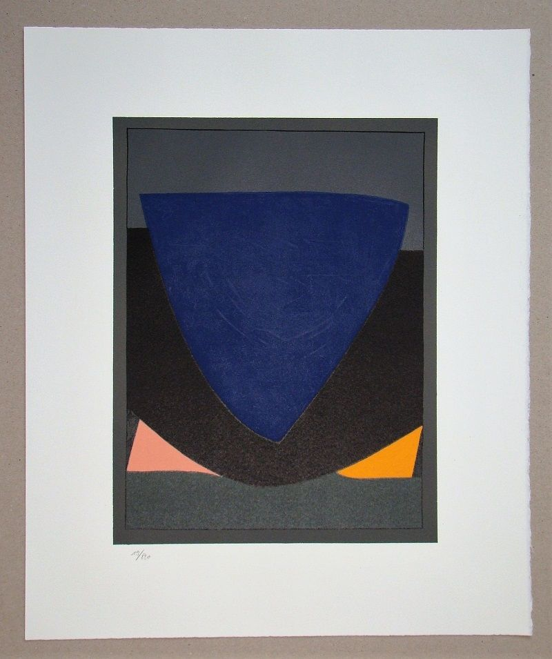 Litografía Vasarely - Tecoma