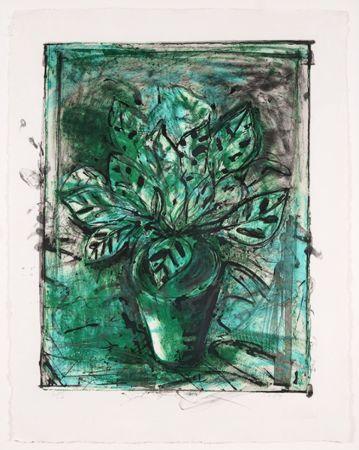 Litografía Dine - The Jerusalem Plant, No 8