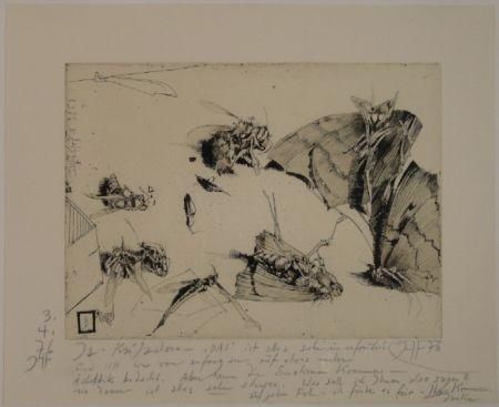 Grabado Janssen - (Tote Nachtfalter und Insekten)