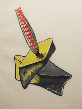 Aguafuerte Y Aguatinta Ray - Transfiguration d'un cactus