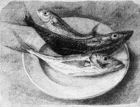 Aguafuerte Mongatti - Tre pesci dell'Adriatico