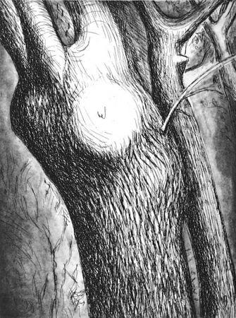 Aguafuerte Y Aguatinta Moore - Trees VI dead ash