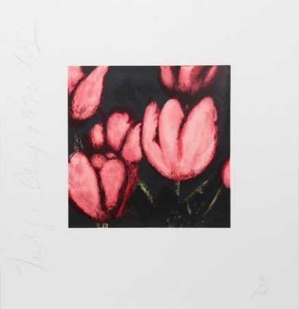Serigrafía Sultan - Tulips