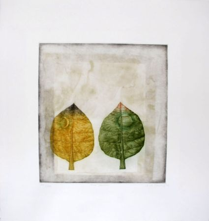 Manera Negra Hwang - Two leaves