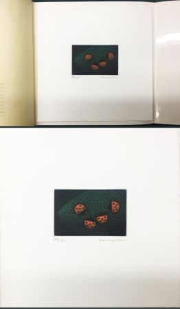 Manera Negra Hamaguchi - Two Pairs (Ladybirds). signed. with the original book (1976)