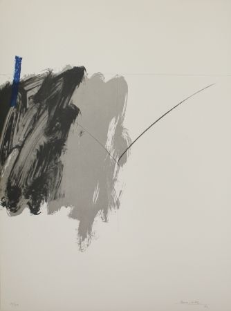 Litografía Borrell Palazón - Untitled