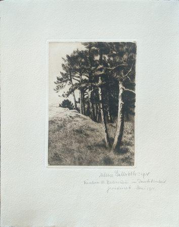Punta Seca Haasbauer-Wallrath - Untitled (Kiefern am Waldrand)