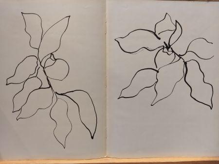Libro Ilustrado Matisse - Vence