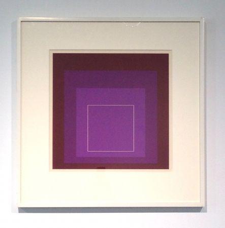 Litografía Albers - White Line Square, XI