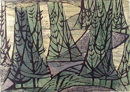 Grabado En Madera Haas - Wooded Point