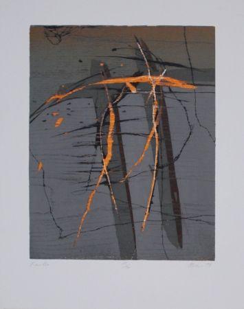 Grabado En Madera Olschewski - Xantho