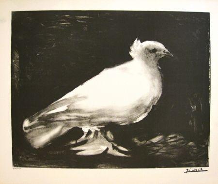 Litografía Picasso - XXème anniversaire, mouvement de la paix (before lettering)