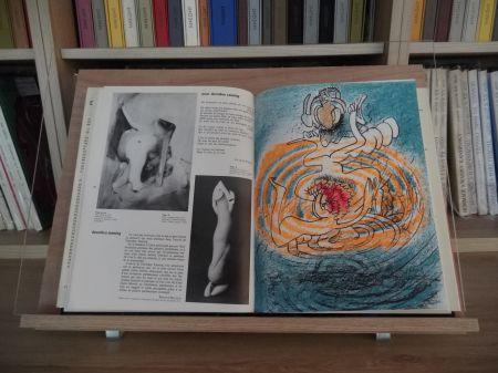 Libro Ilustrado Matta - Xxe Tanning