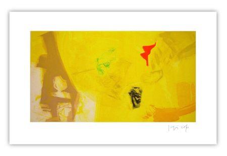 Grabado Capa - Yellow and colors