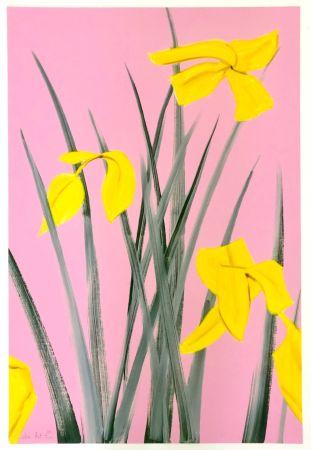Grabado Katz - Yellow Flags 3
