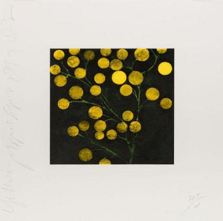 Serigrafía Sultan - Yellow Peppers