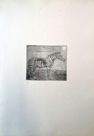 Punta Seca Ligabue - Zebra